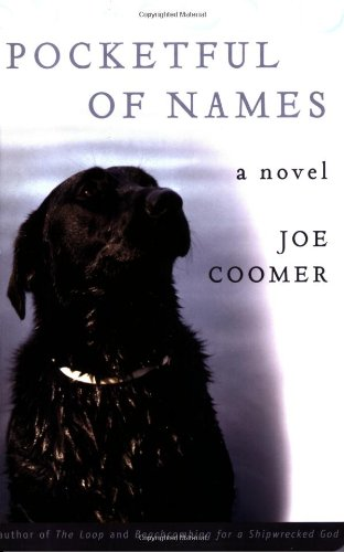 book cover of Pocketful of Names