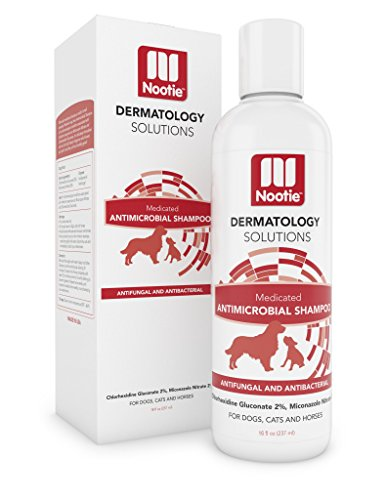 Medicated Shampoo: Antifungal, Antibacterial Shampoo - Lather Then Rinse To Soothe Irritation and Strengthen Coat