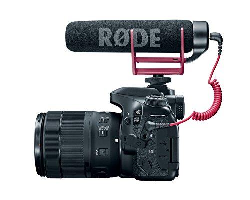 Buy lenses for dslr video