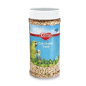Kaytee Oat Groats Treat Jar for Pet Birds
