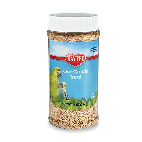 Kaytee Oat Groats Bird Treat