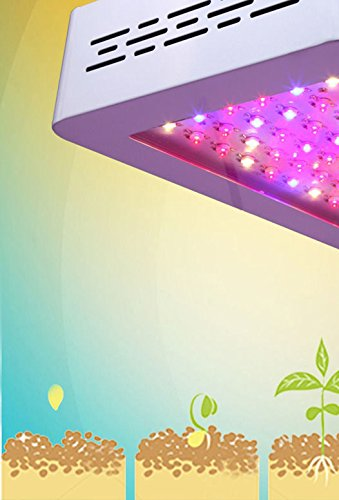 Green Led Light Extraction