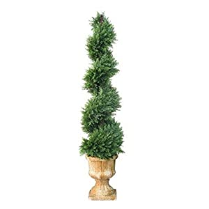 54 in. Juniper Slim Spiral Tree with Decorative Urn 63
