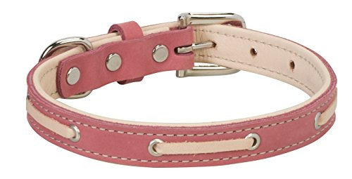 Weaver Pet Deck Dog Collar