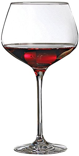 Wine Enthusiast Fusion Infinity Glasses