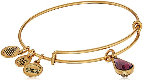 Alex and Ani February Birth Month Charm with Swarovski Crystal Rafaelian Gold Bangle Bracelet