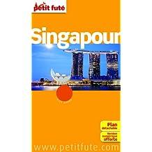SINGAPOUR 2014-2015 + PLAN DE VILLE