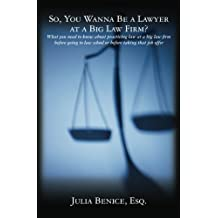 So, You Wanna Be a Lawyer at a Big Law Firm?: What you need to know about practicing law at a big law firm before going to law school or before taking that job offer