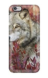 Annie T Crawford Case Cover For Iphone 6 Plus Ultra Slim DkzbvhX1433fQhsj Case Cover