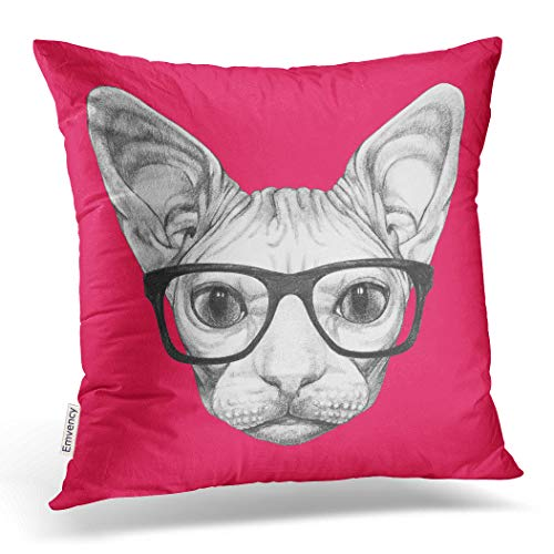 Hairless Cat - Emvency Decorative Throw Pillow Cover Square 16x16 Inches Pillowcase Portrait of Sphynx Cat with Glasses Funny Cat Pillow Case Home Decor for Bedroom Couch Sofa