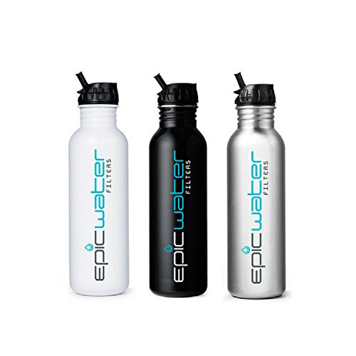 Epic-Metal-Stainless-Steel-27-oz-Water-Filtration-Bottle-with-1-Everyday-Filter-Removes-Lead-Fluoride-and-99-of-Tap-Water-Contaminants-Silver