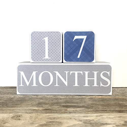 Sweet Sage Studio Wooden Baby Milestone Blocks - 3 Color Styles - Best Baby Age Photo Props, Wooden Age Blocks, Baby Photography Props, Nursery Decor ()