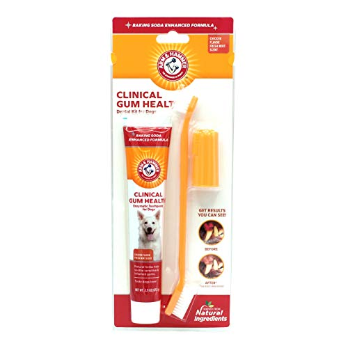 Arm & Hammer Clinical Care Dental Gum Health Kit for Dogs | Contains Toothpaste, Toothbrush & Fingerbrush | Soothes Inflamed Gums, 3-Piece Kit, Chicken Flavor from Arm & Hammer For Pets