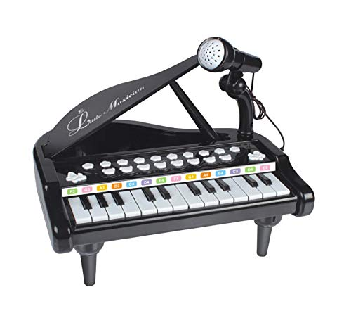 Vertily Piano Keyboard Toy for Kids 1 2 3 4 Year Old Girls First Birthday Gift 24 Keys Multifunctional Musical Electronic Toy Piano for Toddlers Education Toys -