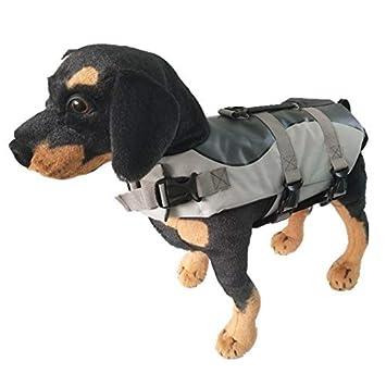 Amazon.com: JESSEPOUNDS - Traje de natación para perro ...