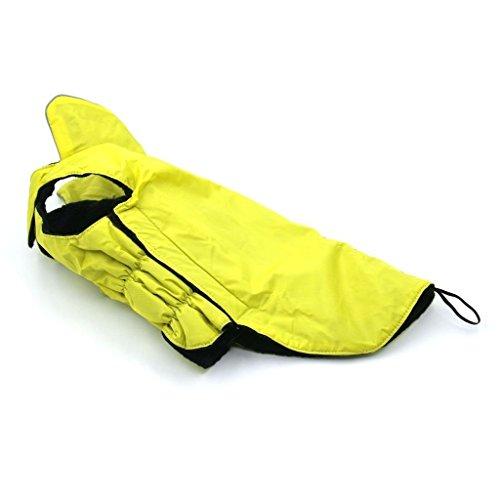 Rain Dog Raincoat - 8