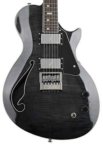 ESP LTD BW-1 Evertune Signature Series Ben Weinman Electric Guitar with Case, See Thru Black