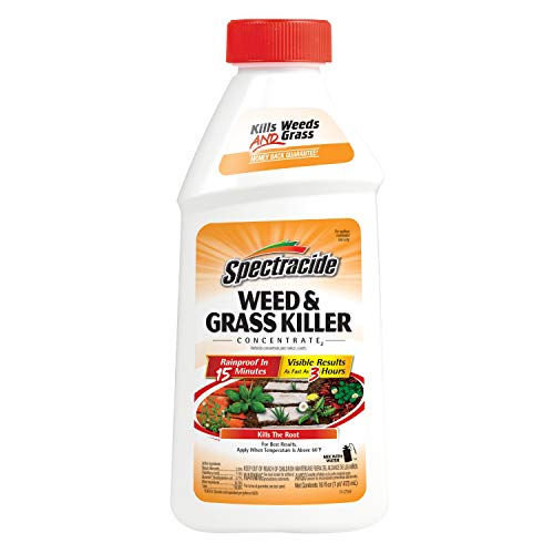Spectracide Weed & Grass Killer Concentrate2, 16-Ounce
