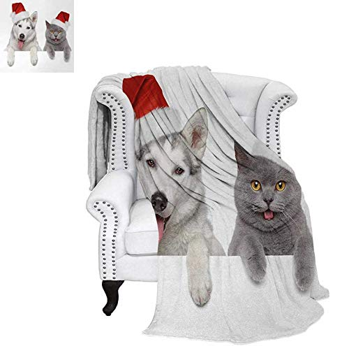 (Oversized Travel Throw Cover Blanket Cute Dog and Cat in Santa Red Hats Funny Puppy and Kitty Domestic Pet Animal Super Soft Lightweight Blanket 80