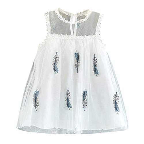 DAmeng Toddler Baby Girl Sleeveless Feather Embroidery Tulle Princess Dress Clothes (White, - Feather Rosette