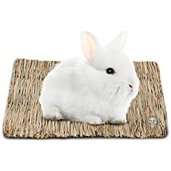 SunGrow Seagrass Rabbit Mat, Protect Paws from Wire Cage, Treat Bunny's Sore Hocks, Handmade Woven Play Bed, Edible Chew Toy, Place in Cage or on Floor
