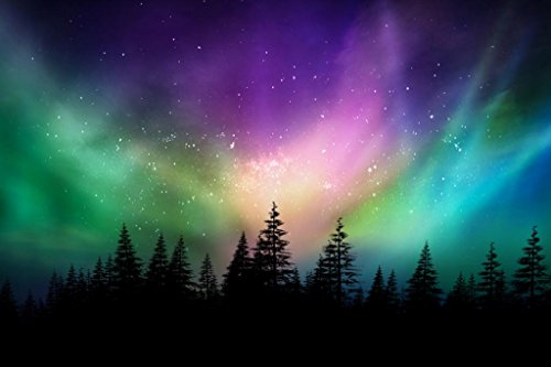 Multicolored northern lights  on Canadian forest Poster 24x3