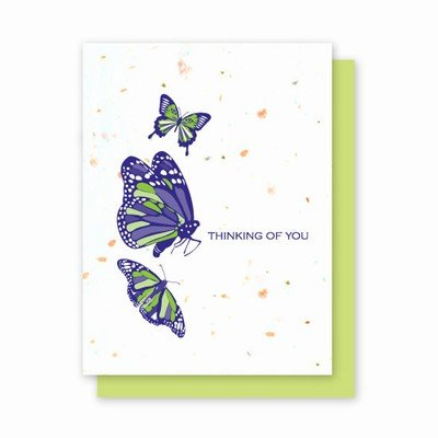 Grow-a-Note Plantable Wildflowers Greeting Cards, Thinking of You Butterflies, Package of 4 ()