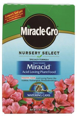 miracle-gro-plant-food-for-azaleas-camellias-and-rhododendrons-15-pound-fertilizer-for-acid-loving-p
