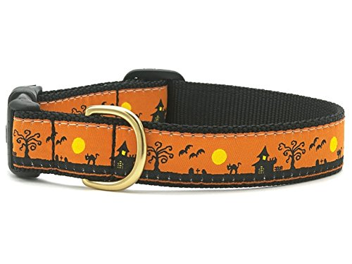 Up Country- Halloween Spooky Town Dog Collar- Medium (12