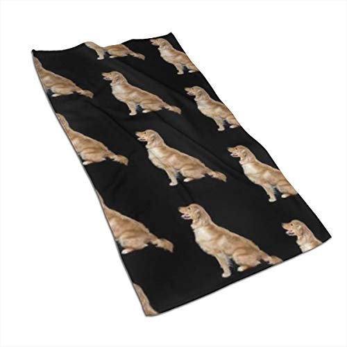 HIIBKRGF Golden Retriever Dogs Hand Towel,Kitchen Towels-Dish 3D Design Pattern Towel,Face Towel,Towels for The Kitchen,Cooking,Baking,Cleaning,Dishwashing Towel 15.7x27.5in