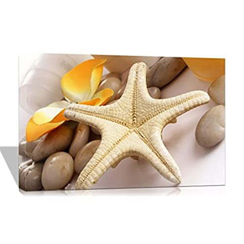 Decorative Picture Starfish for Beach Bedroom: Amazon.com