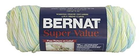 Bernat Super Value Yarn, Ombre, 5 Ounce, Budgie, Single Ball