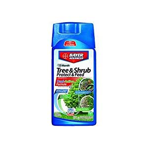 Bayer Advanced 701810 12 Month Tree and Shrub Protect and Feed Concentrate, 32-Ounce