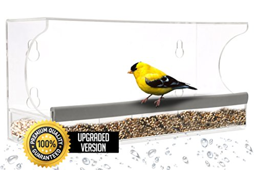 Bird Feeder House, Removable Tray With 4 Suction Cups, Drain Holes For Easy To Clean & Fill, Premium Quality & Strong Clear View Acrylic, Bird Seeds, Decor Birdhouse By Diamond - Free At Glasses On Home For Try
