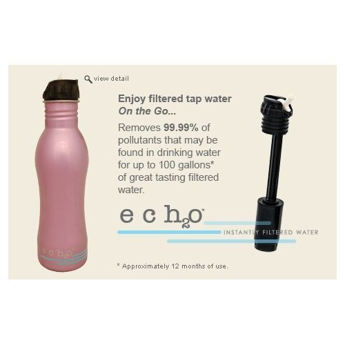 EcoUsable Ech2o 25 oz Stainless Steel Filtered Bottle - Lavender