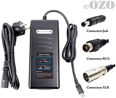 OZO - Cargador de batería de Litio de 48 V y 2 A, 48 V (54,6 ...