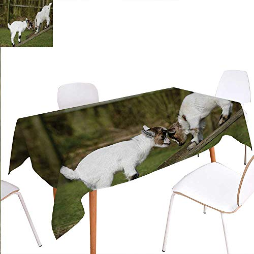 90x40 2 Horn - Warm Family Animal Printed Tablecloth Two Cute Little Baby Goats on a Bench with Their Horns Picture Image Design Rectangle Tablecloth 60