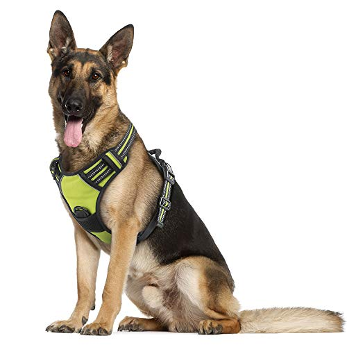 Rabbitgoo Dog Harness No-Pull Pet Harness Adjustable Outdoor Pet Vest Reflective Oxford Material...