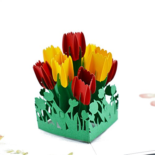 (Magic Ants Pop Up Cards 3D Tulip Flowers Mothers Day Gift Card Get Well Anniversary Gifts Greeting Cards for All Occasion Birthday Girl Women Wife Mother)