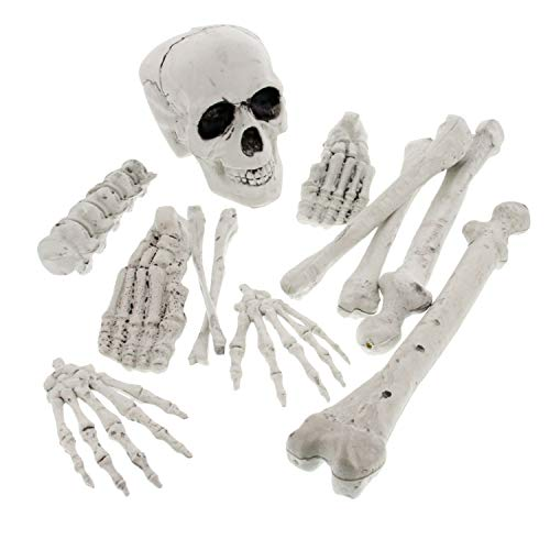 Bag Of Bones Halloween Props (Halloween Haunters 12 Piece Bag of Plastic Skeleton Bones Prop Decoration - Spooky Graveyard Human Body Part Set, Skull &)