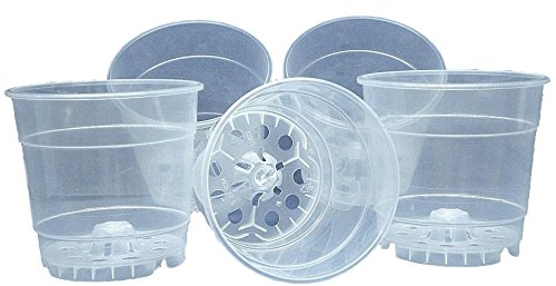 6 inch clear plastic orchid pots - 3