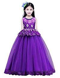 Princess Party Wedding Flower Tulle Lace Dress Embroidered Dresses for Girls Baby