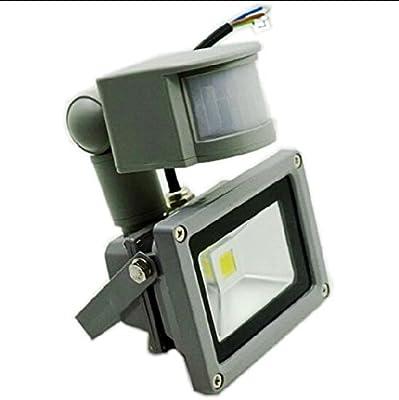 White, 10W : AC/DC 12V 10W PIR Motion Sensor LED Flood Light Outdoor Lamp Waterproof IP65 Induction Projector Light