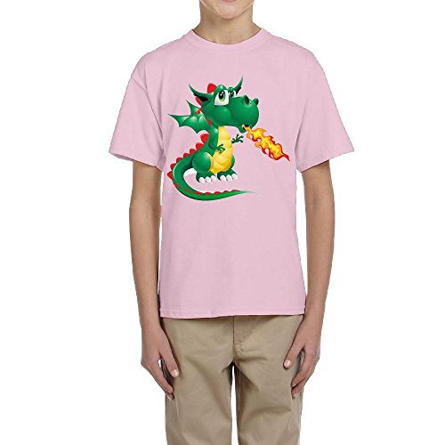 Price comparison product image PTCY Design Boy's Tee Fire Dragon Pterosaur Image Pink Size S
