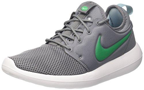 Nike Roshe Two, Zapatillas para Hombre Varios colores (Cool Grey / Stadium Green / Mica Blue / White)