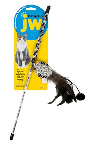Doskocil JW Pet Ball with Wand Cataction Toy