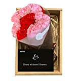 WTOR Mom Birthday Flower Carnation Flowers Artificial Rose Soap Carnation Flower with Gift Box, Gift for for Birthday, Father's Day