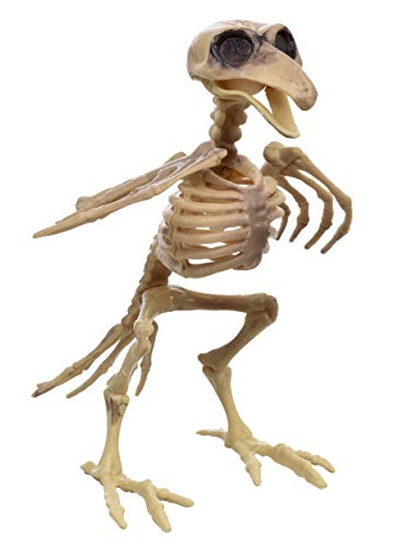 Creepy Bird Skeleton Decoration Prop - Halloween, Graveyard Scene, Haunted House, Costume -