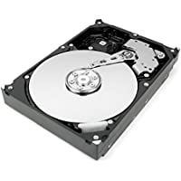 300GB 10K SAS 3.5 3Gbps Hard Disk Drive (Certified Refurbished)