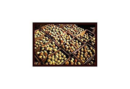 amazon com buyenlarge crates of peaches print black framed poster